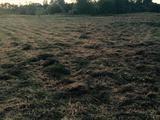 Земельный участок 100 соток (ижс)
